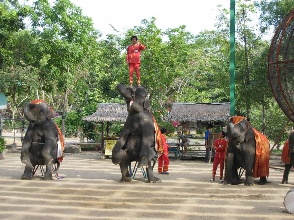 Samutprakam Crocodile Farm and Zoo